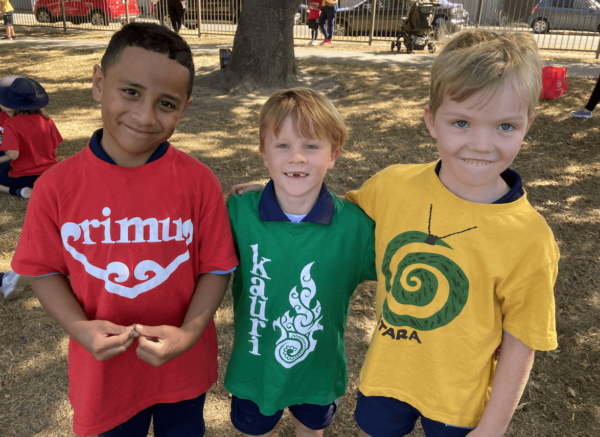 Papanui Primary Students in house colours